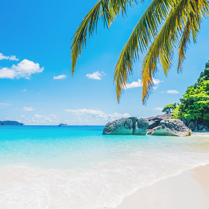 SEYCHELLES IS OPEN FOR BUSINESS